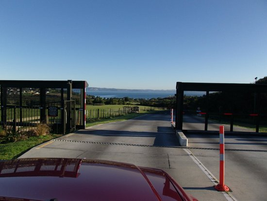 Shakespear Regional Park : pest proof security gates