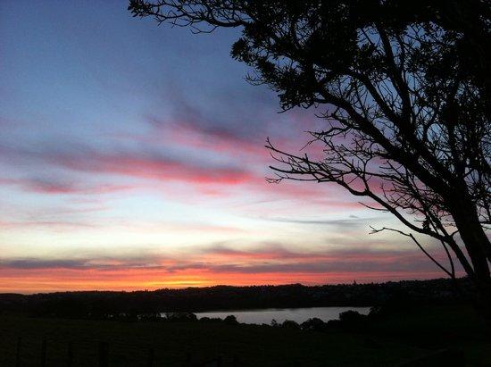 Shakespear Regional Park: a sunset