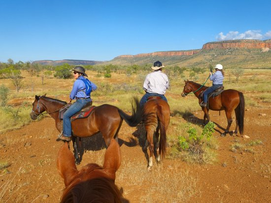 Digger's Rest Station : Horseback ride into the valley between the North and the South Cockburn Ranges