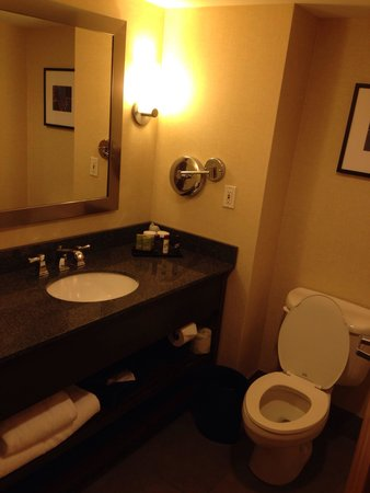 Embassy Suites by Hilton Columbus Dublin: Bathroom, room 410, nice shampoos and soaps