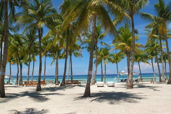 Bohol Beach Club: Stunning room view