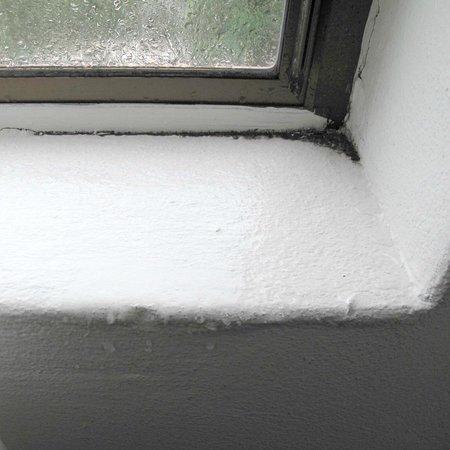 Garden Lodge Sydney: Mold on windowsill