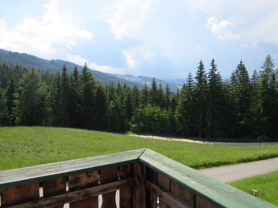 Hotel Rainsberghof: Uitzicht