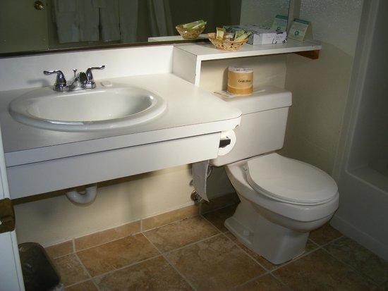 Yosemite Cedar Lodge: Bathroom
