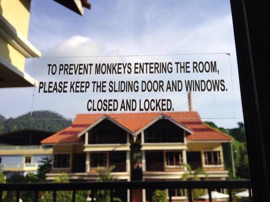 Anjungan Beach Resort & Spa: Balcony door, Room