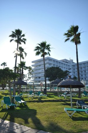 Hotel Playa Esperanza: le parc et l'hotel en fond