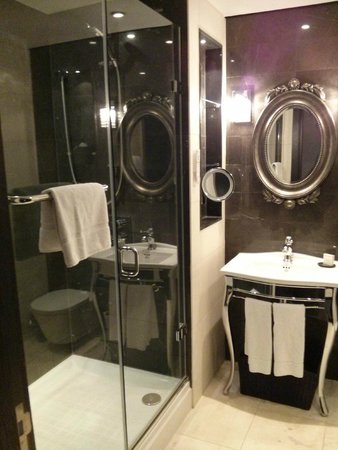 Hilton London Syon Park : bathroom - shower with TV