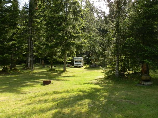 Sayward Valley Resort Fisherboy Park: Our RV in it's spot.