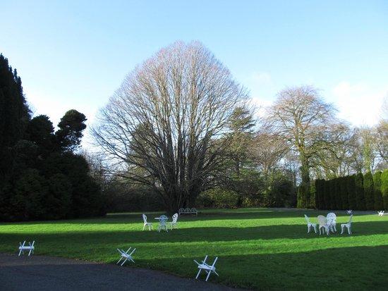 Springfort Hall Country House: Vista dos Jardins do Hotel