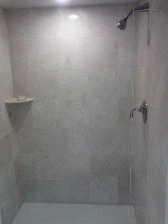 Ameristar Casino Hotel Council Bluffs : Walk-in shower