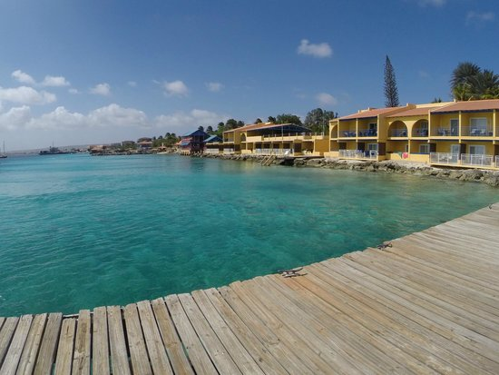 Divi Flamingo Beach Resort and Casino: A view of the resort for the south dock looking north