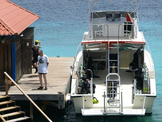 Divi Flamingo Beach Resort and Casino: Dive boat and dive lockers