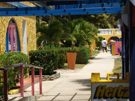 Divi Flamingo Beach Resort and Casino: The main walk through the resort
