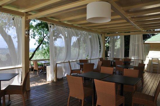 Villa I Barronci: The terrace