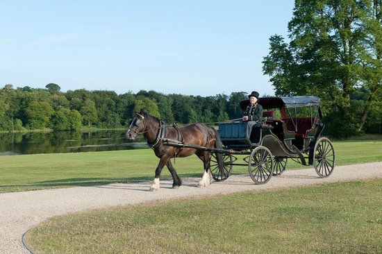 Ballyfin Demesne: Pony & Carriage Tour