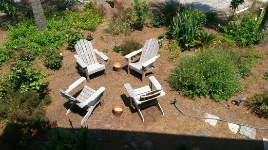Hotel Beachview Bed and Breakfast: Garden seating area