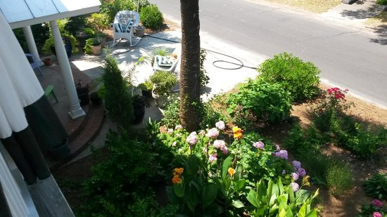 Hotel Beachview Bed and Breakfast: Garden and Porch seating