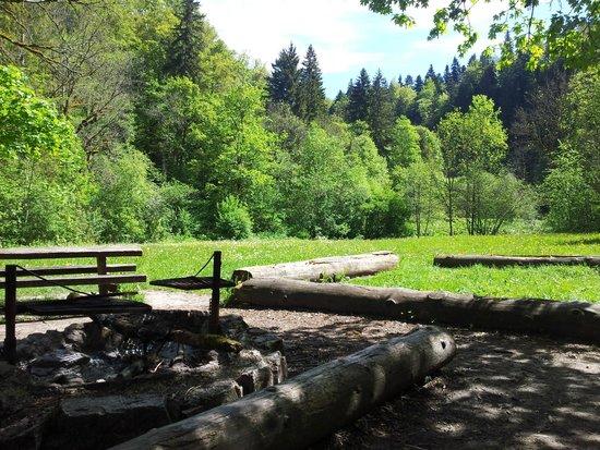 Wutachschlucht: halfway rest place