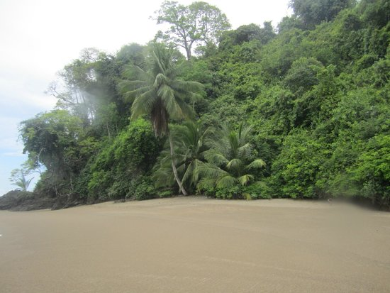 Costa Rica Dive and Surf: Cano Island from Dive Boat