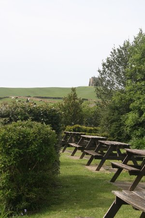 The Ilchester Arms Hotel Restaurant: Beer garden leading onto St Catherines Chapel