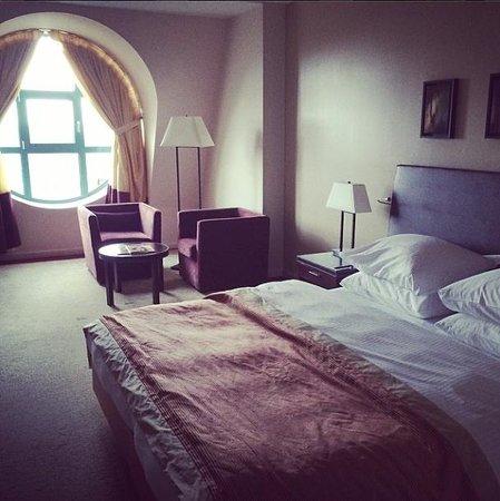 Radisson Blu Astrid Hotel, Antwerp : De kamer