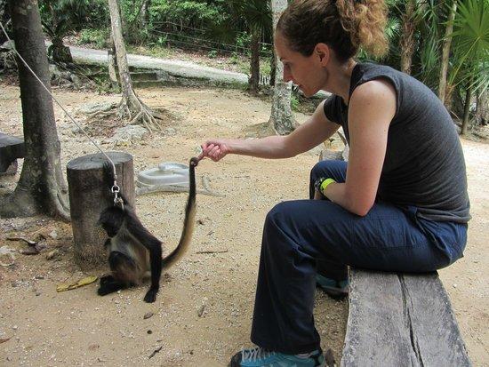 Aktun Chen: Sarah and the spider monkey