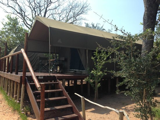 Tydon Safari Camp : Our tent for 2