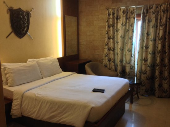 Amrutha Castle: Modest, yet clean and tidy room