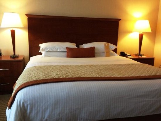 DoubleTree by Hilton Hotel Boston - Andover: great sleeping