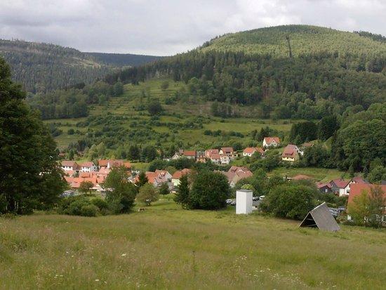 Oberschönau, Deutschland: view from hiking track above town