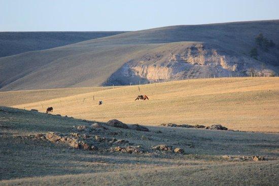 Badger Creek Ranch: Aussicht