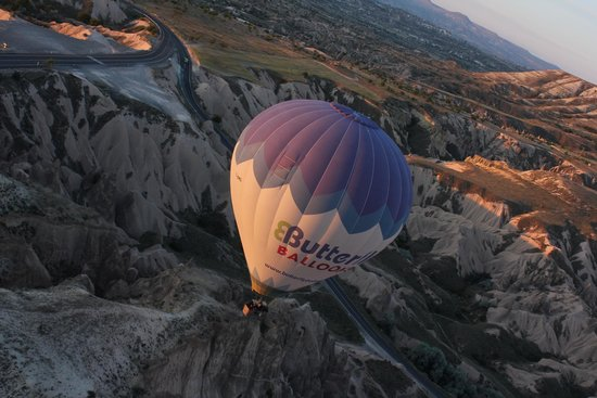 Butterfly Balloons: View from the balloon