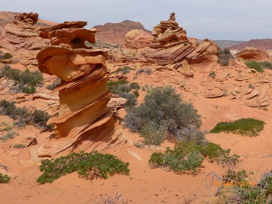 Paria Outpost and Outfitters: S Coyote Buttes