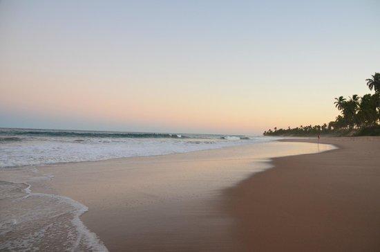 Iberostar Praia do Forte: PLAYA 2