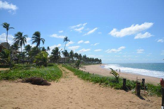 Iberostar Praia do Forte: PLAYA