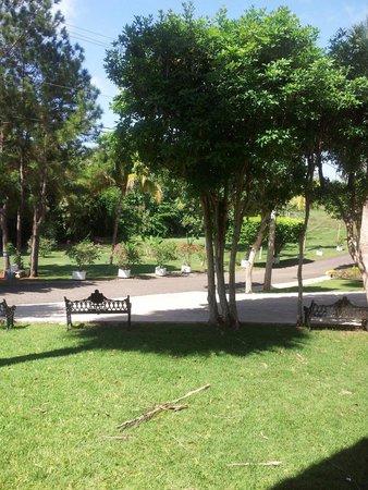 Parador El Faro: Garden view