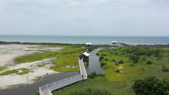 South Padre Island Birding and Nature Center: From observation deck