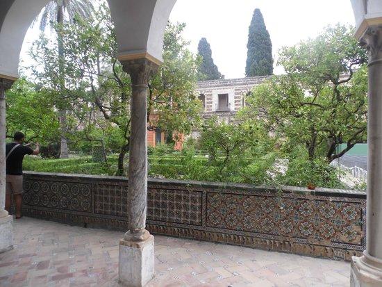 Alcázar: foto4