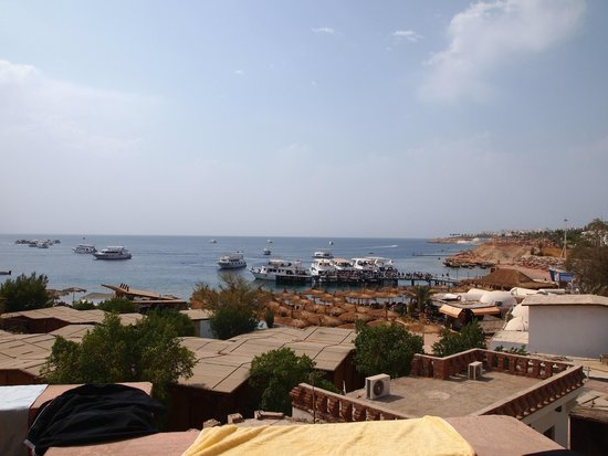 Sharks Bay Umbi Diving Village: View from our balcony