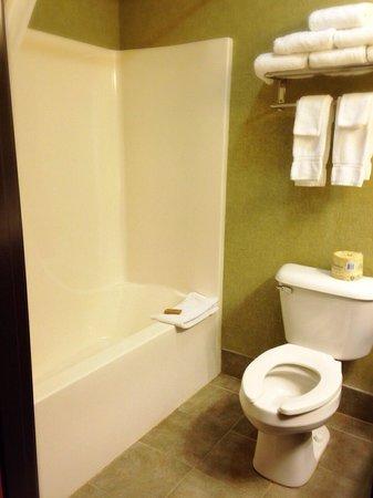 Three Bears Resort: Room 414 restroom