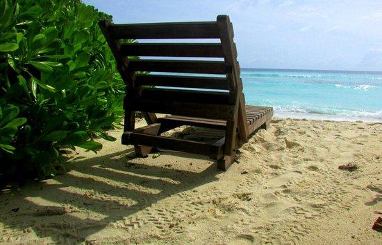 "Makunudu Island : ""Our"" beach."