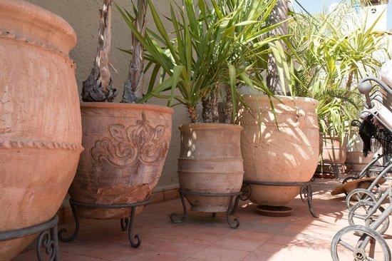 Riad le Clos des Arts : Terrasse Vue de la piscine