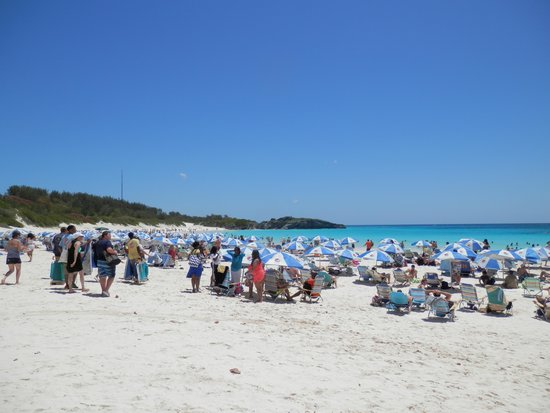 Horseshoe Bay Beach: Horseshoe Beach