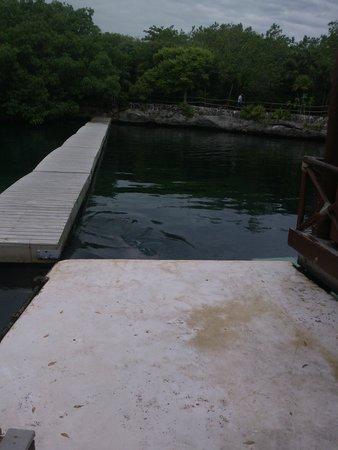 Xel-Ha: río