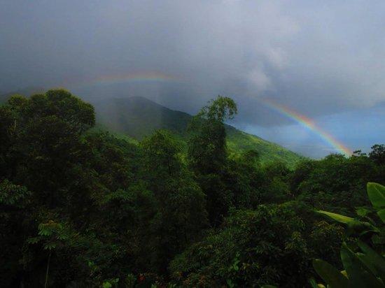Casa Flamboyant : Rainbow
