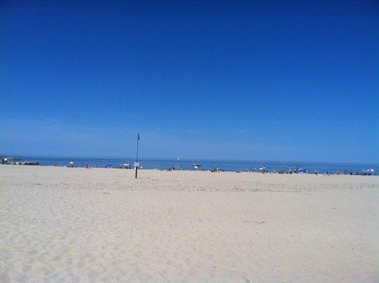 Holland State Park Beach: Beach
