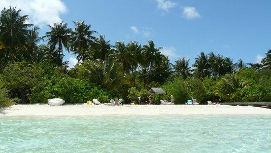 Embudu Village: Spiaggia di fronte alla camera