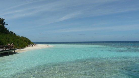 Embudu Village: Tratto di spiaggia/mare