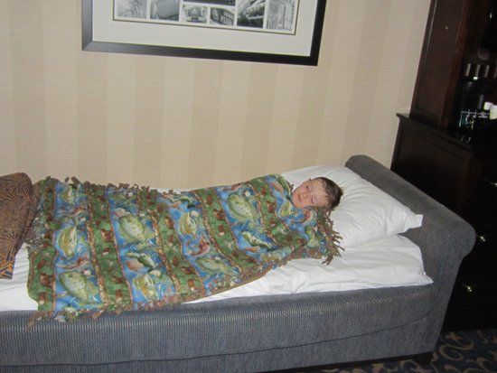 Disneyland Hotel: 5 year old had no trouble sleeping on couch/bed.
