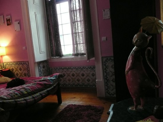 Pensao Royal: cat room